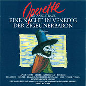 STRAUSS II: Night in Venice (A) / Der Zigeunerbaron (Highlights) (Rogner) by Various Artists
