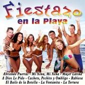 Fiestazo en la Playa by Various Artists