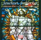 Johann Sebastian Bach: Sacred Music von Various Artists