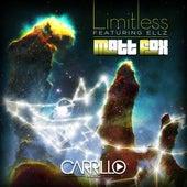 Limitless by Matt Fox