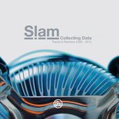 Collecting Data von Various Artists