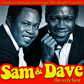 Sam & Dave the Very Best by Sam and Dave