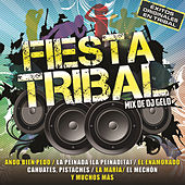 Fiesta Tribal by Various Artists