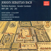 Bach: Cantatas - BWV 202, 203, 209 von Various Artists