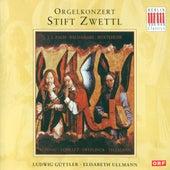 Loeilleit, Kuhnau, Baldassare, Buxtehude, Bach, Sweelinck & Telemann: Organ Concerts by Various Artists