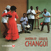 Ahora Si Here Comes Changul by Various Artists