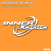 Lost Voices by Liam Shachar