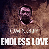 Endless Love by Owen Gray