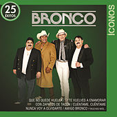Íconos 25 Éxitos by Bronco