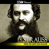 Strauss: Where the Lemons Blossom by Various Artists