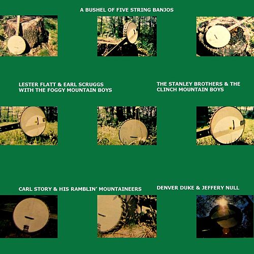 A Bushel Of Five Strings Banjos by Various Artists