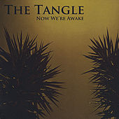 Now We're Awake by The Tangle