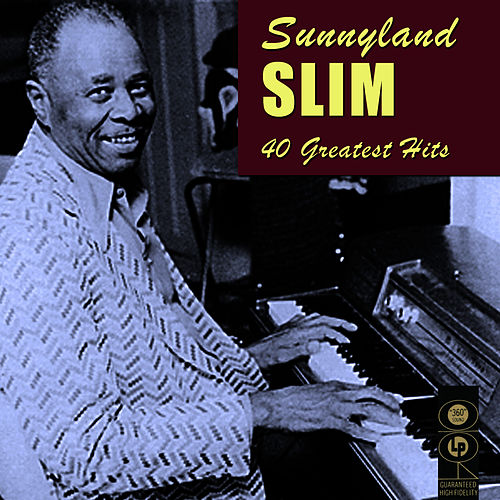 40 Greatest Hits by Sunnyland Slim