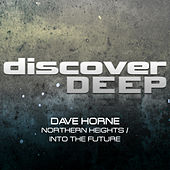 Northern Heights / Into the Future by Dave Horne