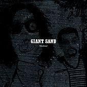 Black Out by Giant Sand