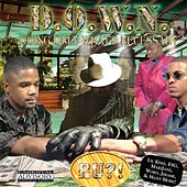 Doing Only What's Necessary by D.O.W.N.