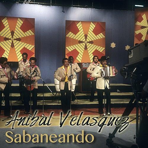 Sabaneando by Anibal Velasquez