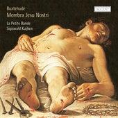 Buxtehude: Membra Jesu Nostri von Anne-Katrin Schenck