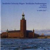 Stockholm University Singers: A Noble Choir by Stockholm Academic Male Chorus