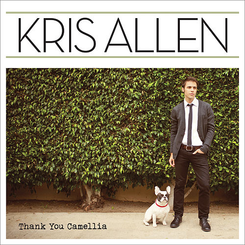 Thank You Camellia by Kris Allen