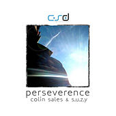 Perseverence by Colin Sales