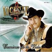 Caminos de la Vida by Vicente De Monteclaro