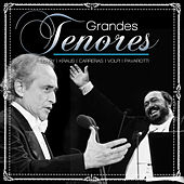 Grandes Tenores by Various Artists