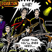 Live! - More Than You'll Ever Need by Silver Sun