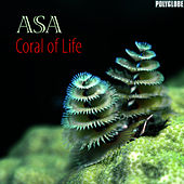 Coral of Life by Asa