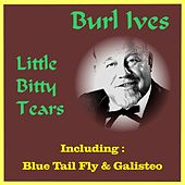 Little Bitty Tears by Burl Ives