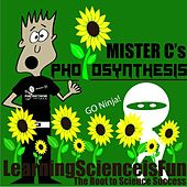 Photosynthesis by Mister C