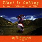 Tibet Is Calling by The Tibetan Monks