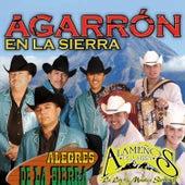 Agarrón En La Sierra by Alegres De La Sierra Y Alameños De La Sierra