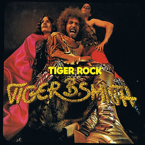 Tiger Rock by Tiger B. Smith