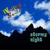 Stormy Night by Wailing Souls