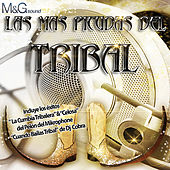 Las Más Picudas del Tribal by Various Artists