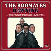 Dawning by The Roomates