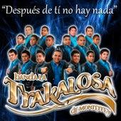 Después De Ti No Hay Nada - Single by Banda La Trakalosa