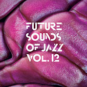 Future Sounds Of Jazz Vol. 12 by Various Artists