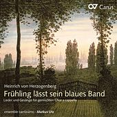 Herzogenberg: Fruhling lasst sein blaues Band (Weltliche Chormusik, Vol. 2) by Ensemble Cantissimo