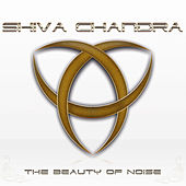 The Beauty of Noise von Shiva Chandra