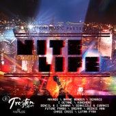 Nite Life Riddim von Various Artists