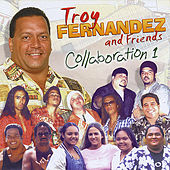 Collaboration, Vol. 1 by Troy Fernandez