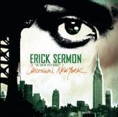 Chilltown New York by Erick Sermon