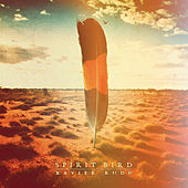 Spirit Bird by Xavier Rudd