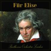 Für Elise by Ludwig van Beethoven