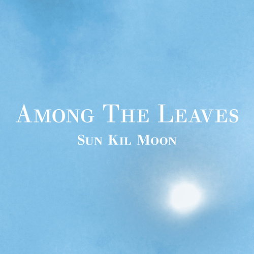 Among The Leaves by Sun Kil Moon