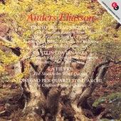 Eliasson: Canto Del Vagabondo / Canti in Lontananza / La Fievre / Disegno for String Quartet by Various Artists