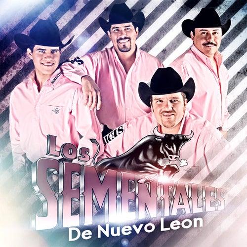 Como le Hago para Olvidarte by Los Sementales De Nuevo Leon