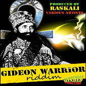 Gideon Warrior Riddim -  Vol. 1 by Various Artists